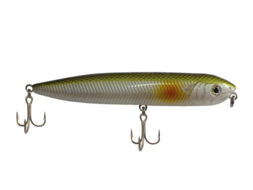 Omega Needle fish