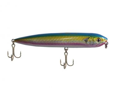 Omega Rainbow Trout