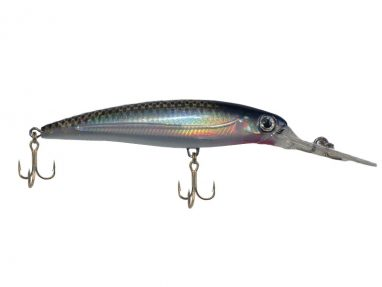 Runner Striped Shad