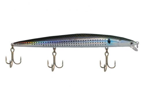 Yakun Striped Shad